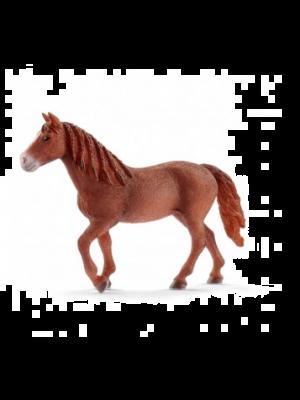 Schleich 13870 Morgan Horse Stute