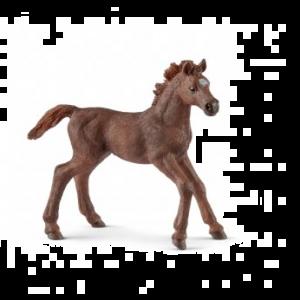 Schleich 13857 Englisch Vollblut Fohlen