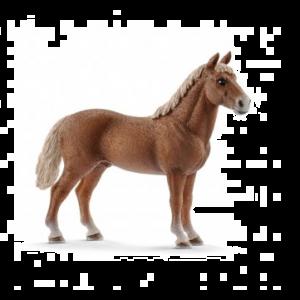 Schleich 13869 Pferd Morgan, Hengst
