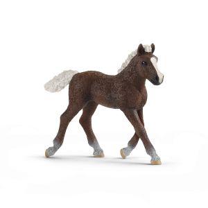 Schleich Pferd 13899 Schwarzwälder Fohlen